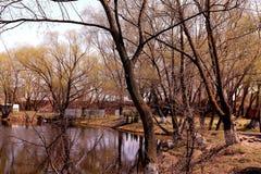 Un parque hermoso con un lago en primavera temprana en Kiev fotos de archivo