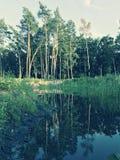 Un parque hermoso en Bucha - BUCHA - UCRANIA Imágenes de archivo libres de regalías