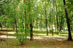 Un parque, Montenegro Imagen de archivo