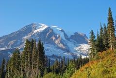Un parque nacional más lluvioso del Mt Imágenes de archivo libres de regalías