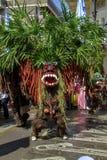 A carnival participant in Asia Africa Festival 2019