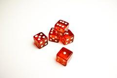 Un particolare di cinque dadi rossi su priorità bassa bianca Fotografia Stock Libera da Diritti