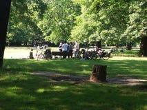 Un partido del verano en Volkspark Hasenheide Foto de archivo libre de regalías