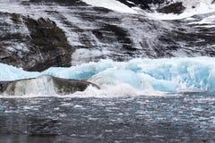 Un parto dell'iceberg Fotografia Stock