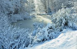 Un país de las maravillas del invierno - Harrison, Maine el 26 de noviembre de 2014 Fotos de archivo libres de regalías
