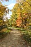 Un paseo abajo del rastro Fotos de archivo libres de regalías