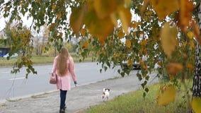 Un paseo de la mujer con el perro metrajes