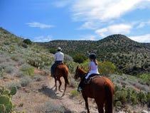 Un paseo del lomo de caballo en el desierto de Arizona, Sedona Imágenes de archivo libres de regalías