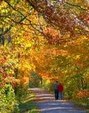Un paseo del otoño Foto de archivo