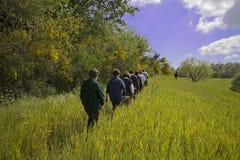 Un paseo en la hierba imagenes de archivo