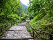 Un paseo fascinador y dif?cil mientras que sube el monte Olimpo en Grecia fotografía de archivo