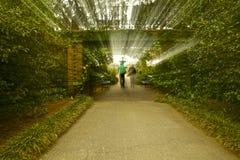 Un passage couvert à faire du jardinage Photo stock