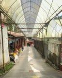 Un passage couvert à la ferme de fraise images libres de droits