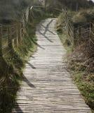 Un passage couvert à lamelles en bois au-dessus des dunes Images stock