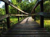 Un passage couvert d'itinéraire aménagé pour amateurs de la nature Photo libre de droits