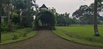 Un passage couvert en parc photos libres de droits