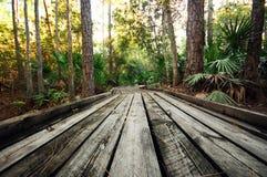 Un passaggio pedonale di legno Immagine Stock