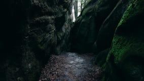 Un passaggio pedonale di pietra nella foresta all'aperto su un terreno collinoso, scala una montagna Tempo nuvoloso in un verde d video d archivio