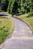 Un passaggio pedonale pacifico attraverso gli alberi nel parco Immagini Stock