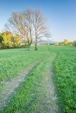 Un pathroad en montagnes de Bieszczady Image libre de droits