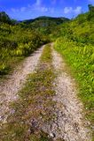 Un-paved rural trail Royalty Free Stock Photo