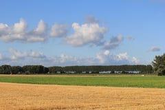Un paysage coloré avec l'élevage cultive au soleil d'été Photos libres de droits
