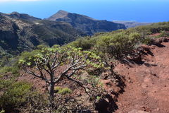 Un paysage d'île de Gomera de La, les Canaries Images stock