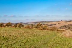 Un paysage d'hiver du Sussex images libres de droits