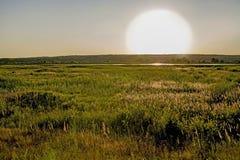 Un paysage de désert avec un grand soleil non filtré, un lac dans la distance et la végétation côtière dans le premier plan photo libre de droits