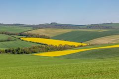 Un paysage de ferme du Sussex au printemps image stock