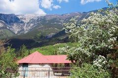 Un paysage de ressort avec une maison et un pommier fleurissant image libre de droits