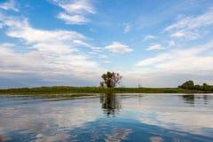 Un paysage idyllique de rivage de lac avec l'arbre et le jonc, le beau ciel profond et la réflexion Photo libre de droits