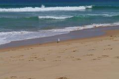 Un paysage marin serein Image stock