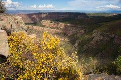 Un paysage montagneux dans le désert photographie stock