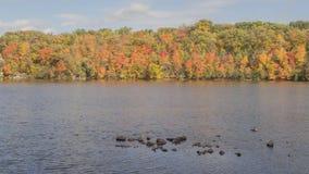 Un paysage moyen tiré de couleurs maximales d'automne le long du fleuve Mississippi puissant dans les villes jumelles 4K TImelap clips vidéos
