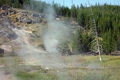 Un paysage volcanique entouré par des sapins au parc de yellowstone Images libres de droits