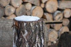 Un pedazo de abedul cubierto con nieve Foto de archivo libre de regalías