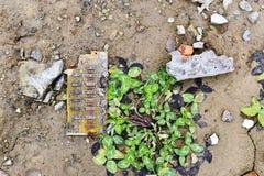 Un pedazo de la placa de circuito eléctrica miente en la tierra al lado del trébol verde Rusia, Zheleznogorsk enero de 2018 Foto de archivo