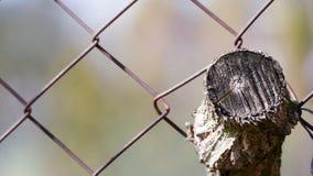 Un pedazo de madera situado en la cerca oxidada vieja Foto de archivo
