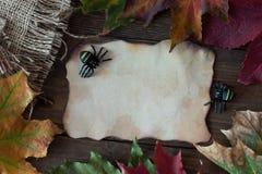 Un pedazo de papel viejo con una araña en Halloween con las hojas Foto de archivo libre de regalías