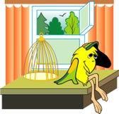 Un pensiero del pappagallo: Per per essere o non essere. immagini stock
