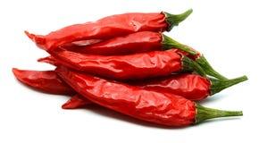 Un peperoncino di due rossi su un fondo bianco fotografie stock