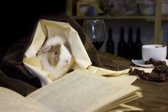 Un pequeño amigo que escucha las historias de un libro viejo imágenes de archivo libres de regalías