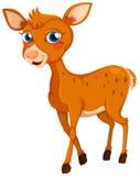 Un pequeño ciervo stock de ilustración