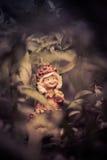 Un pequeño duende, jugando en mi jardín Fotos de archivo libres de regalías