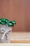 Un pequeño fondo del árbol imagen de archivo libre de regalías