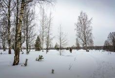 Un pequeño grupo de turistas que viajan en bosque nevado imagen de archivo libre de regalías