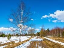 Un pequeño grupo de turistas va en un camino de tierra de la primavera Imágenes de archivo libres de regalías