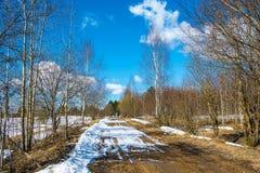 Un pequeño grupo de turistas va en un camino de tierra de la primavera Fotografía de archivo