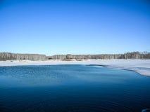 Un pequeño lago con un bosque del abedul Fotografía de archivo libre de regalías